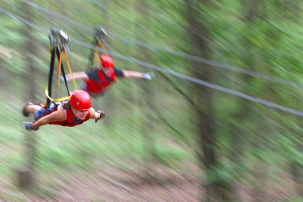 Adrenaline junkies soar through the treetops