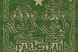 The Farmstead Corn Maze & Pumpkin Festival