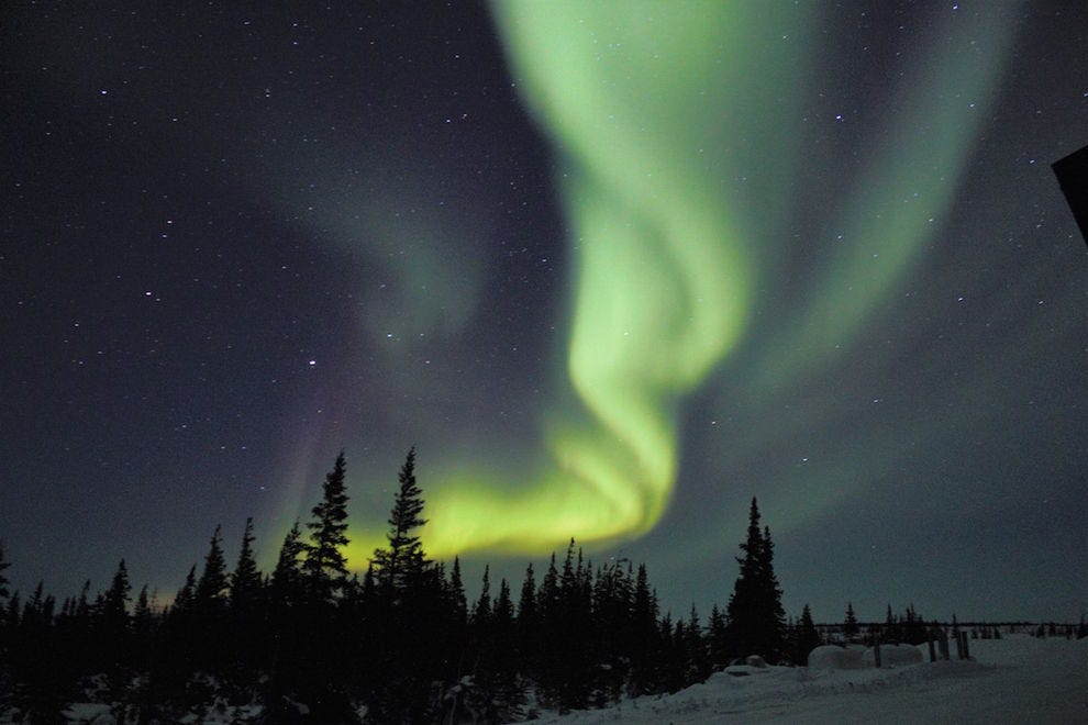 The Churchill Northern Studies Centre is a perfect place to see the Northern Lights