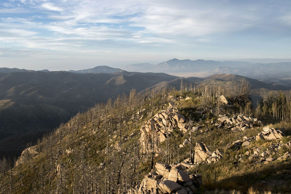 An elevated view of Lincoln National Forest