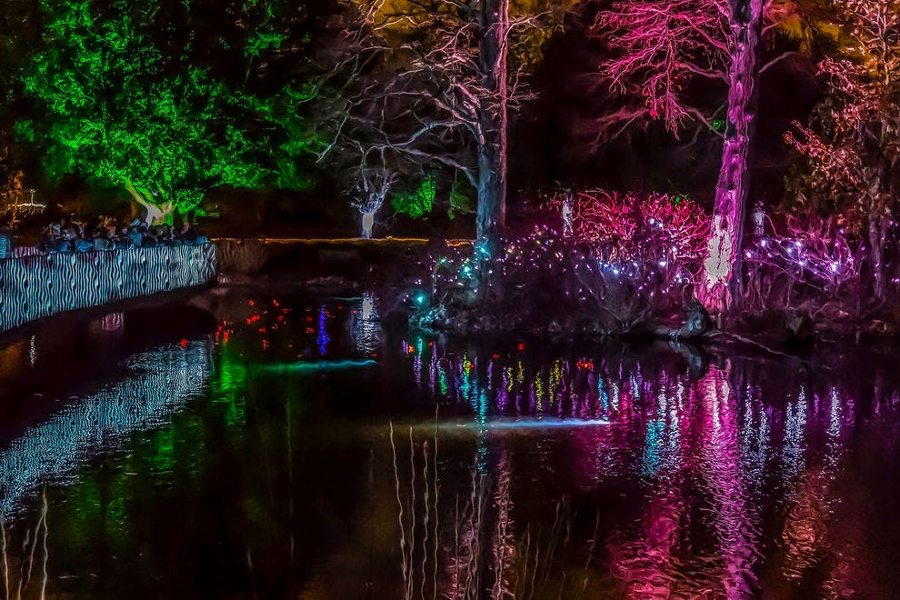 Best Botanical Garden Holiday Lights Winners 2018 10best Readers 39 Choice Travel Awards