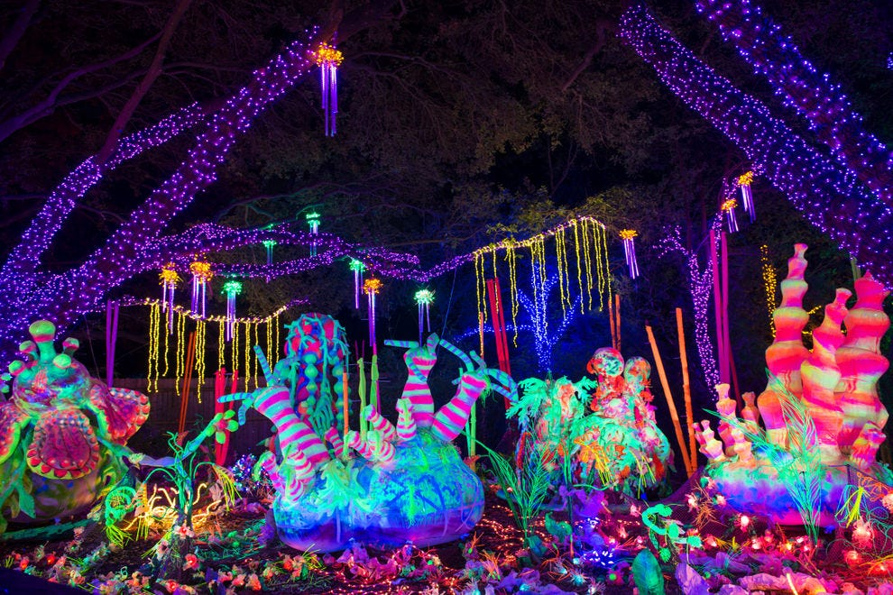 Vote Best Zoo Lights Nominees 2018 10best Readers