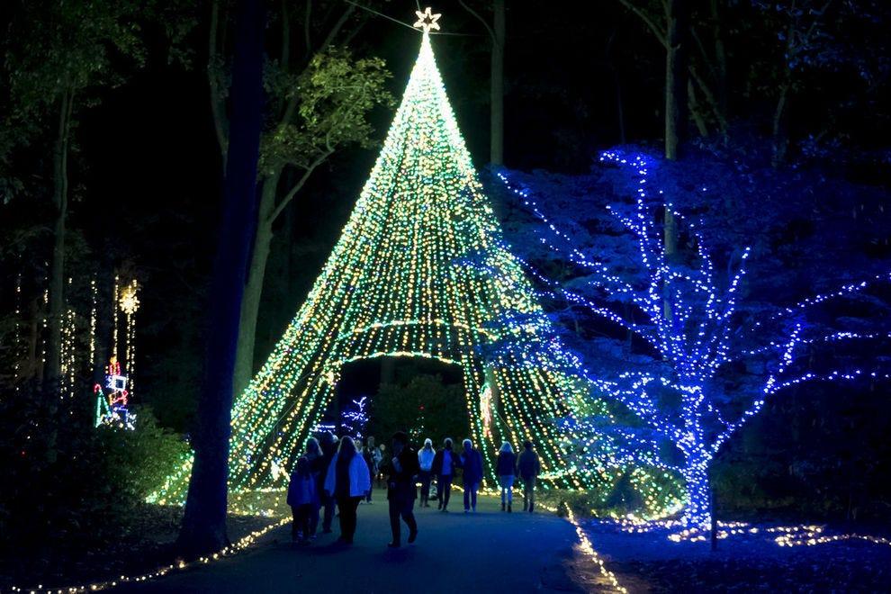 Vote Million Bulb Walk Dominion Energy Garden Of Lights Best Botanical Garden Holiday Lights