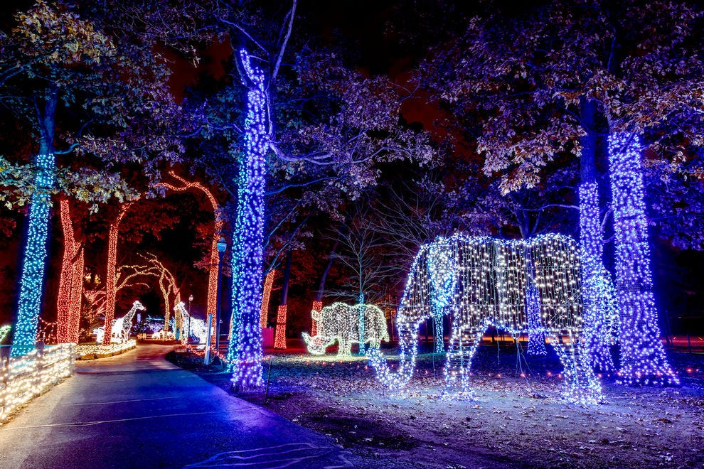 Best Zoo Lights Winners 2018 10best Readers Choice Travel Awards