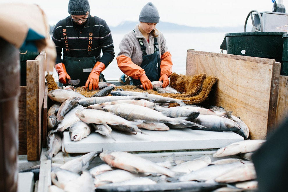 CSAs for fish will now deliver fresh, sustainable seafood to your door