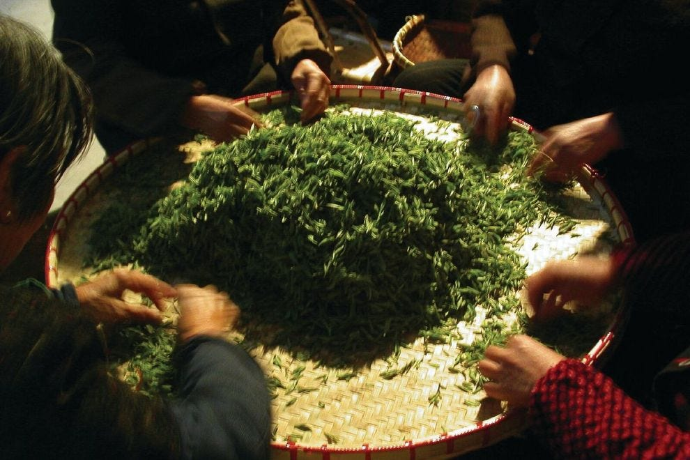 Why this Chinese tea fetches thousands of dollars