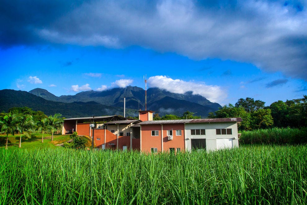 A journey to the jungle capital of cachaça – Brazil's national spirit