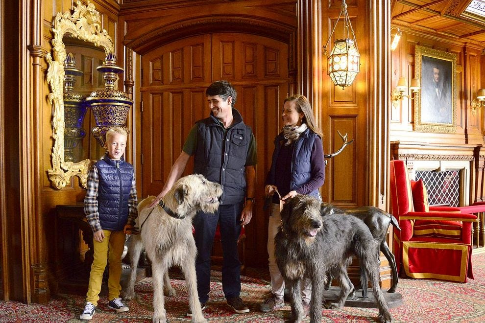 Ashford Castle's resident Irish Wolfhounds