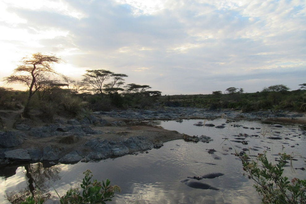 Hippo pool at sunset