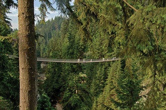 Mother Nature Shines in British Columbia: Explore Vancouver's Best Outdoor Activities