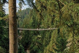 不列颠哥伦比亚省的大自然之光:探索温哥华最好的户外活动