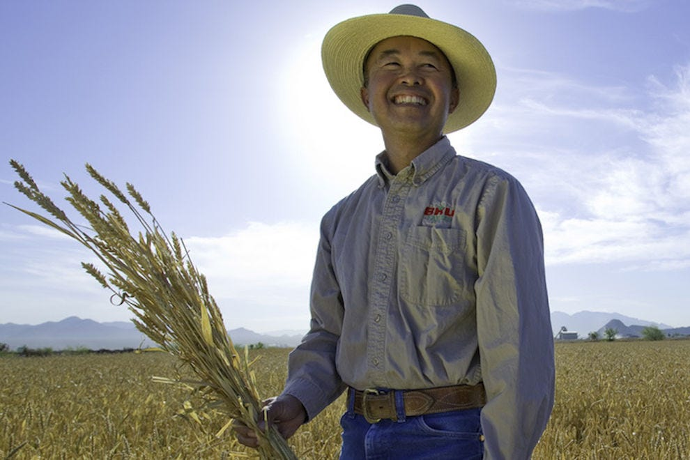 A member of the Wong family standing in his field, with a sheaf of organic Sonoran wheat