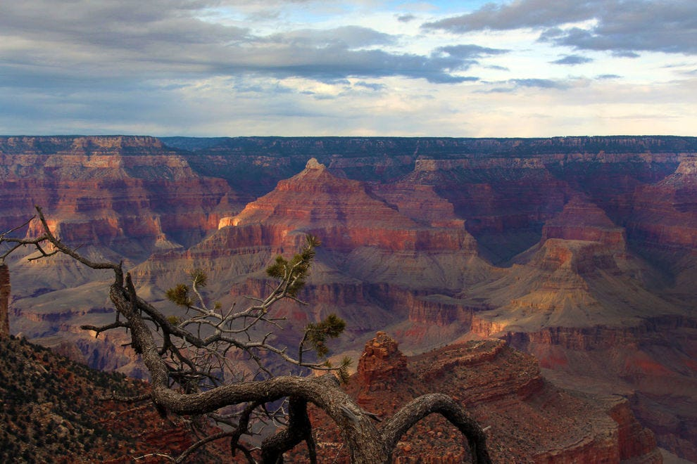 Celebrate 100 years of the Grand Canyon Park on a vintage railway