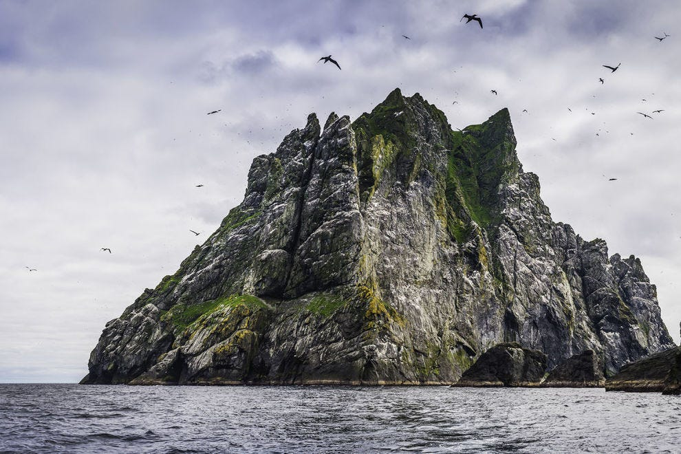 Huge seabird colony on St Kilda