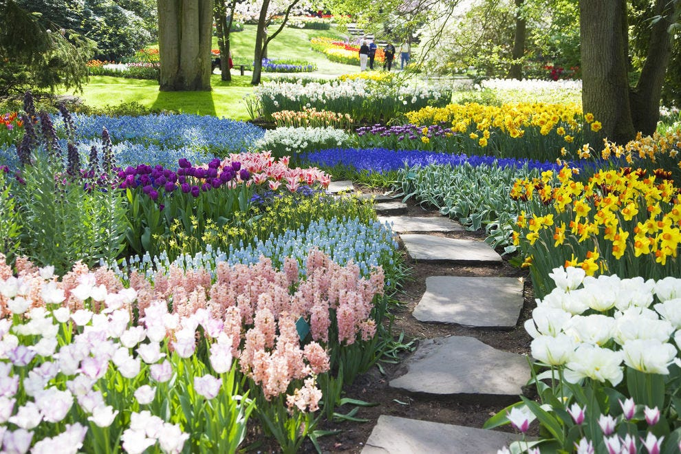 Spring is on display in these top gardens