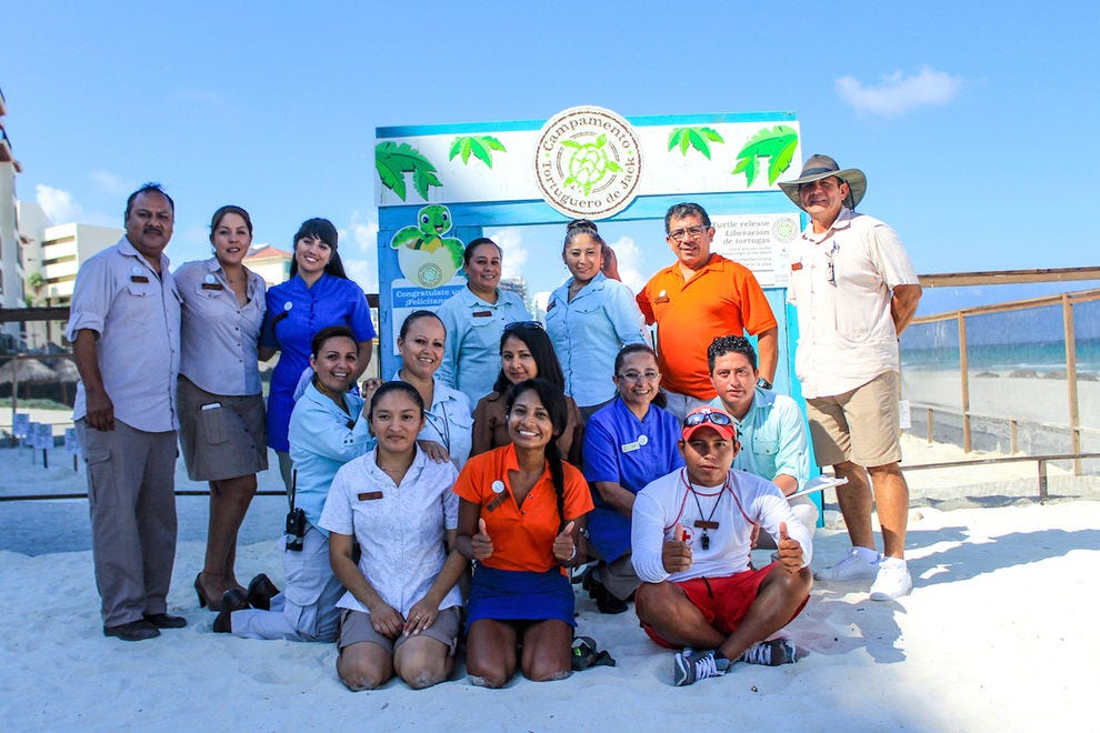 The staff at Panama Jack Cancun take care of all guests, both humans and sea turtles