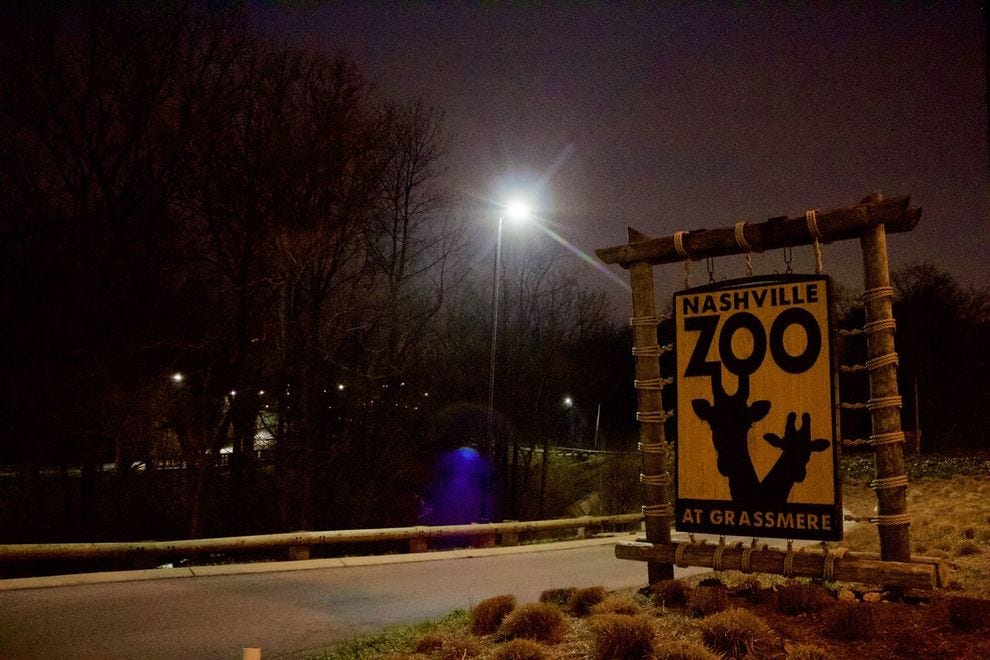 Nashville Zoo at night