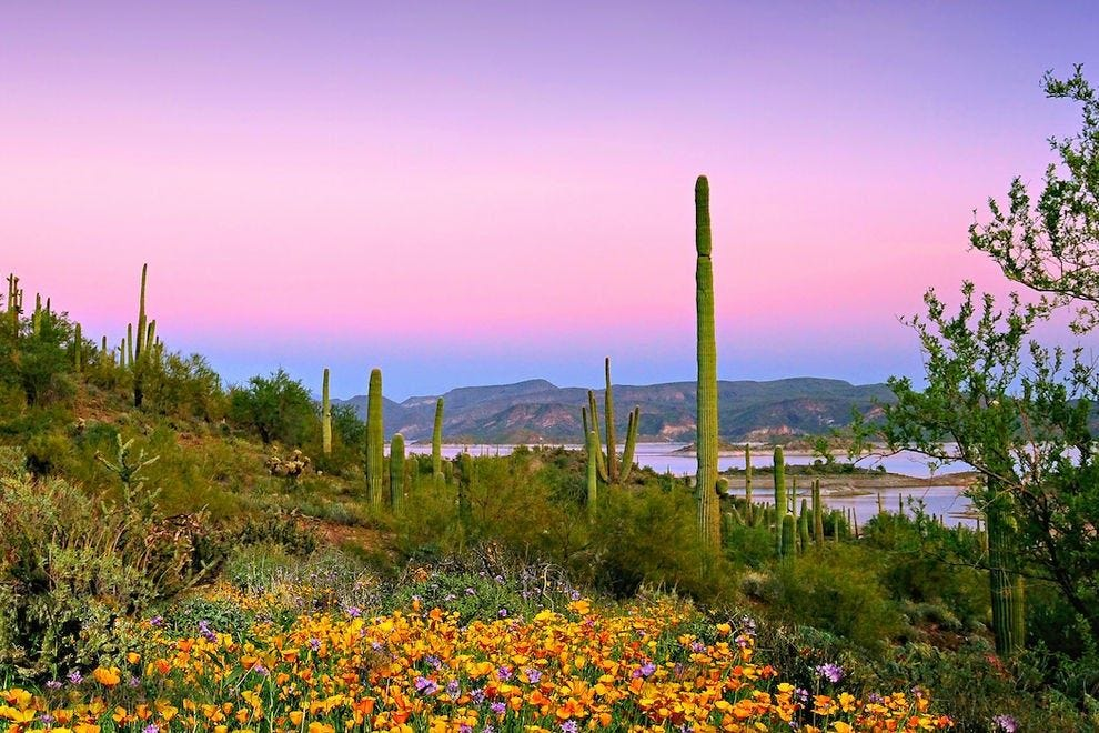 "This extraordinary sunset puts the ""pleasant"" in Lake Pleasant"