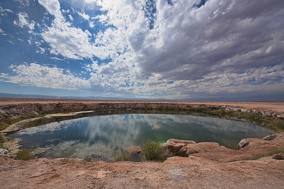 Eyes of the desert, freshwater pools are an oasis in the Atacama