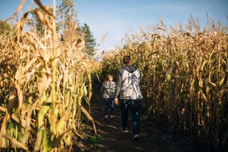 Uncle Shucks Pumpkin Patch and Corn Maze