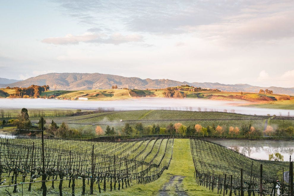 This is the best of American wine country