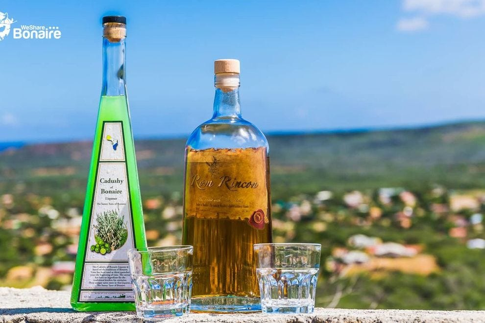 Cadushy Distillery in Bonaire is the only distillery in the world making liquer from cactus plants