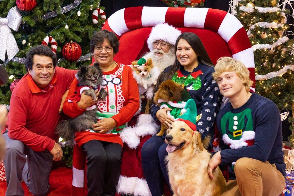 Christmas Pet Expo Scottsdale 2020 Christmas Shopping: Shopping in Toronto