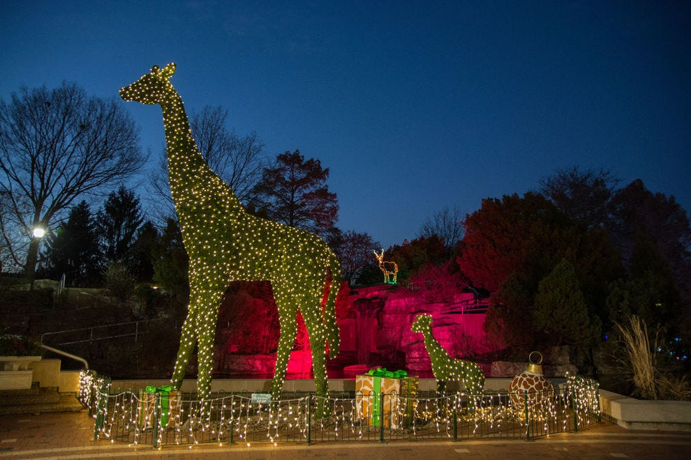 U.S. Bank Wild Lights at the Saint Louis Zoo