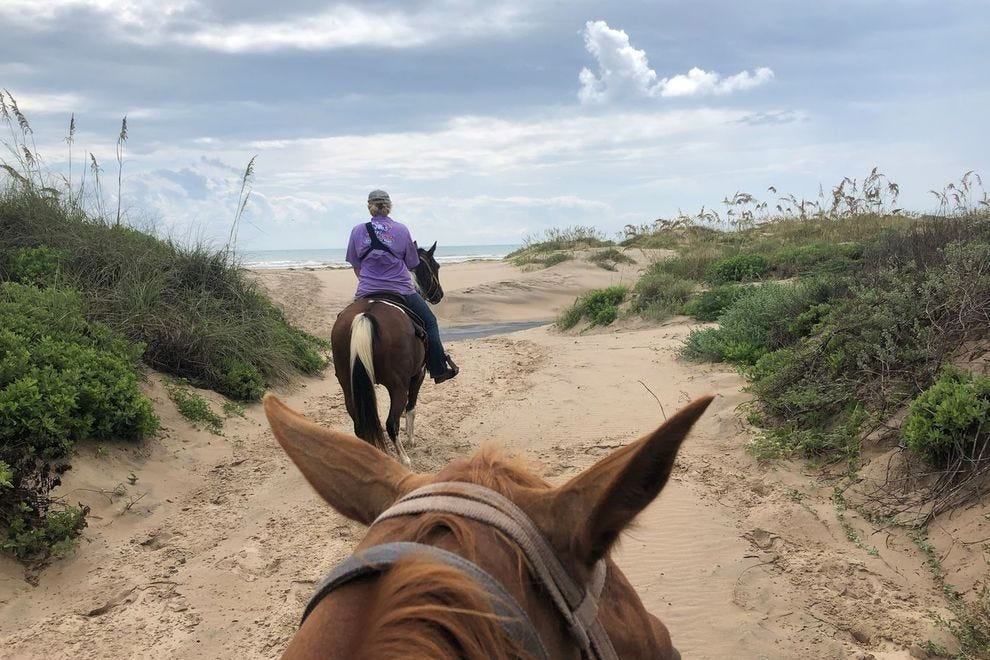Explore the island by horseback at South Padre Island's Island Adventure Park