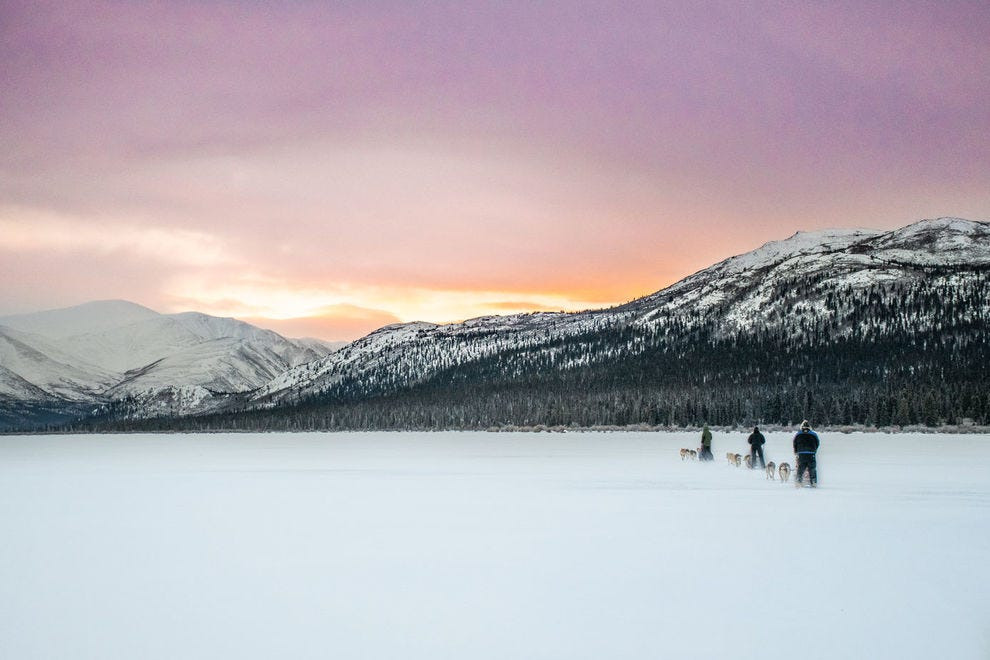 Dogsledding on Fish Lake proves one of the most delightful Yukon experiences