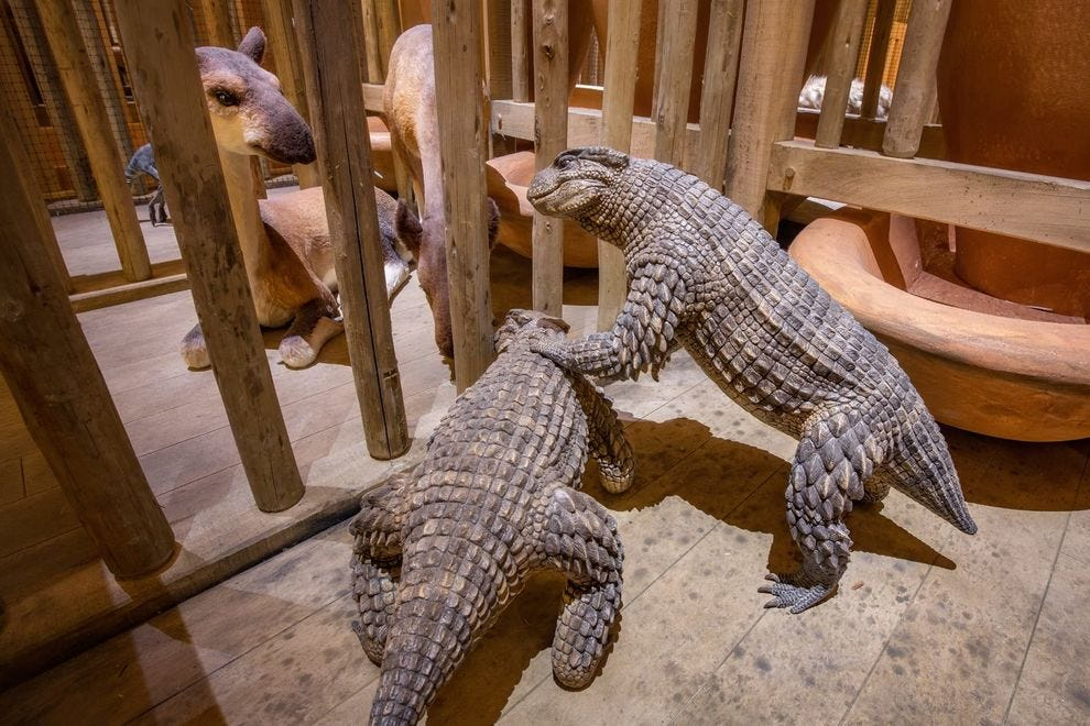 This winning museum invites guests aboard a replica of Noah's Ark