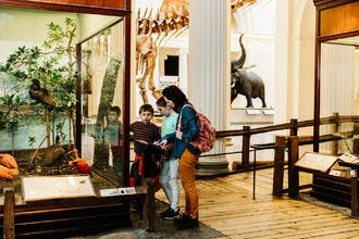 Family-Friendly Museums