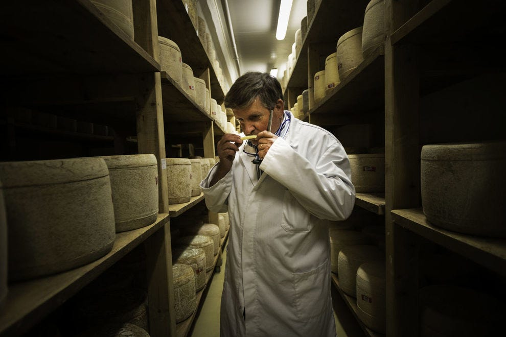 Testing a Salers cheese for aging