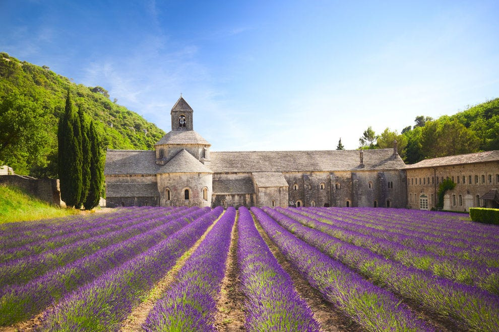 Senanque Abbey in Provence