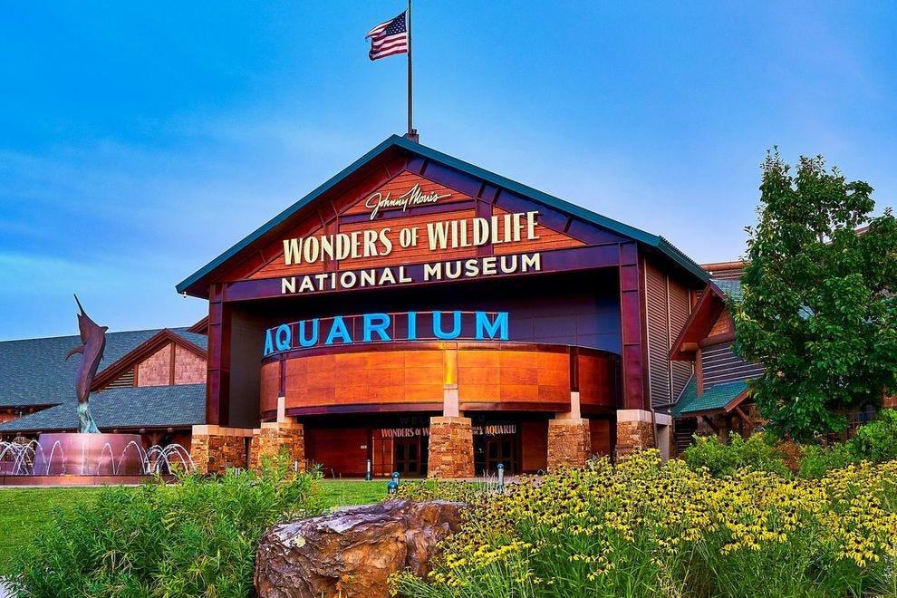 Wonders of Wildlife also won in 2018