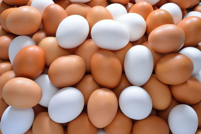 Why you shouldn't bother paying more for brown eggs