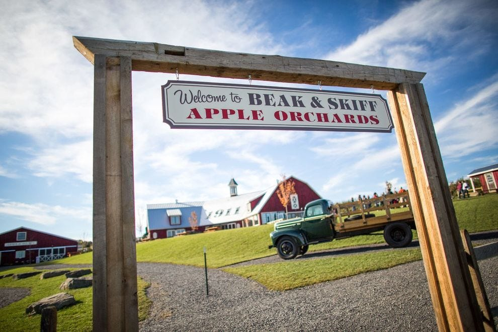 Pick your own apples in New York at this winning orchard