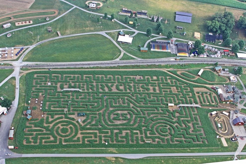 Winning maze celebrates its 25 year in 2020