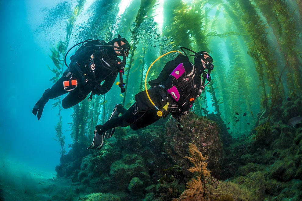 You can scuba dive in these 10 national parks