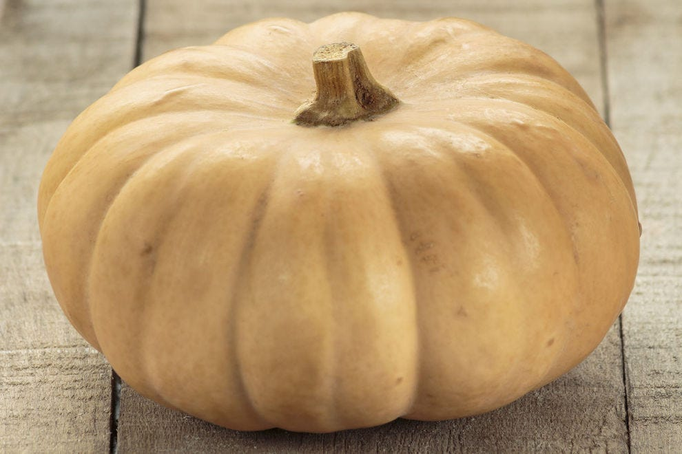 The butterkin gives you the best of both the butternut squash and pumpkin worlds!
