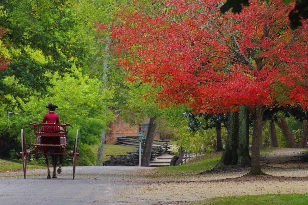 Autumn colors in Williamsburg