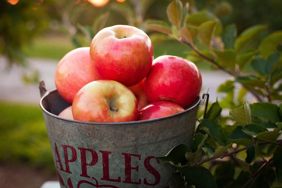 There's more to apples than just Honeycrisp