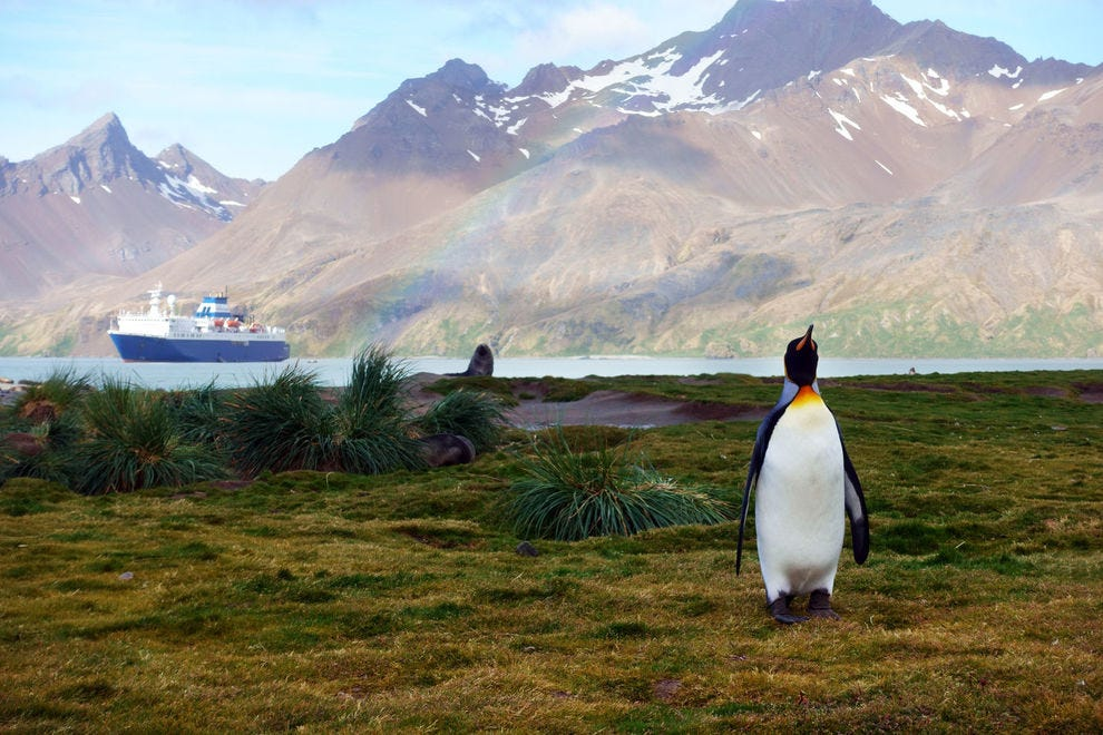 Adventure and expedition ships sail to the world's remote regions