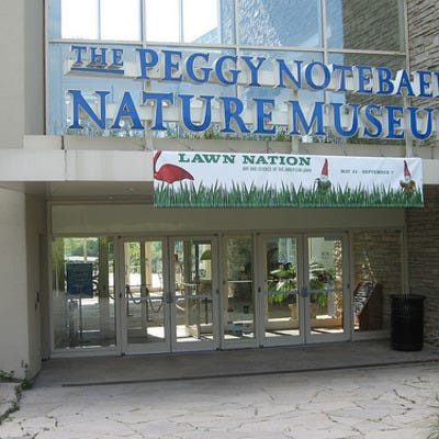 Chicago's Peggy Notebaert Nature Museum offers educational activities for adults and children.