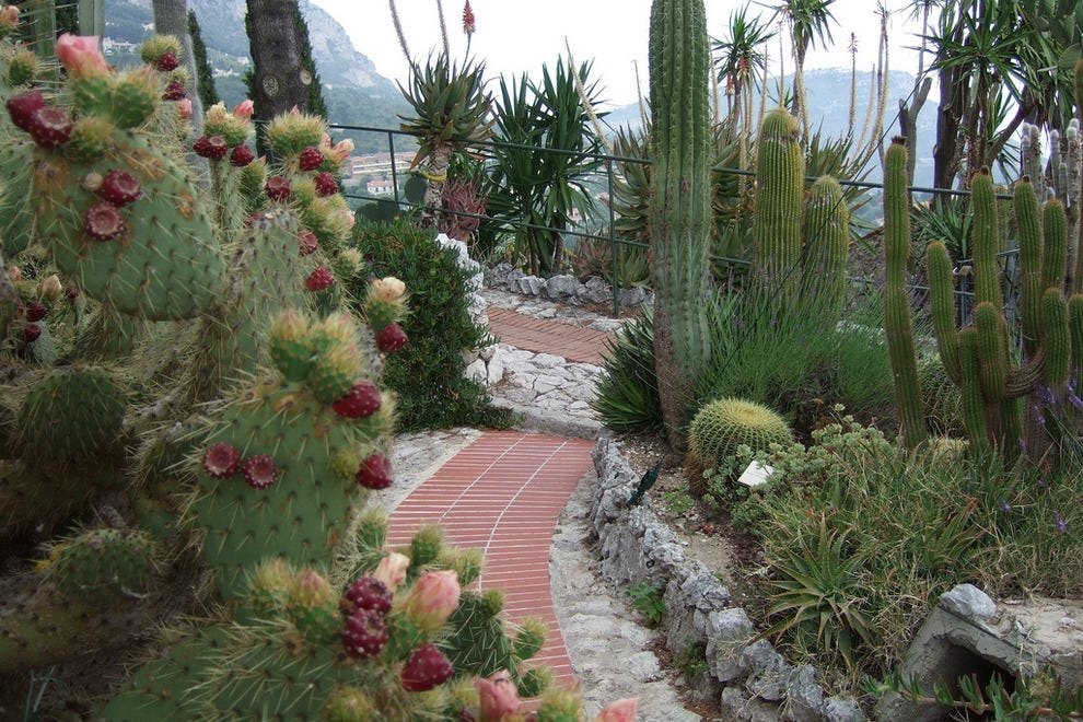 Monte carlo parks 10best park reviews for Jardin exotique