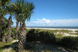 Best Attractions & Activities in Hilton Head