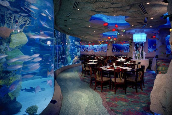 Downtown Aquarium Houston Attractions Review 10best
