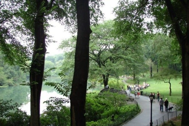 Things To Do In New York Ny New York City Guide By 10best