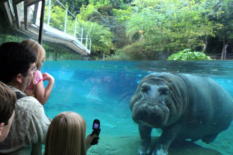 圣地亚哥动物园