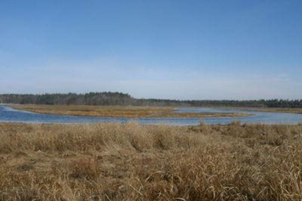 Wells National Estuarine Research Reserve